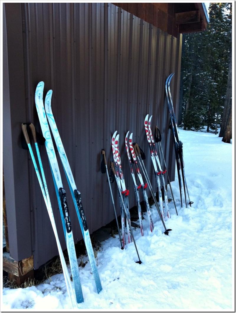 Nordic ski_5-2